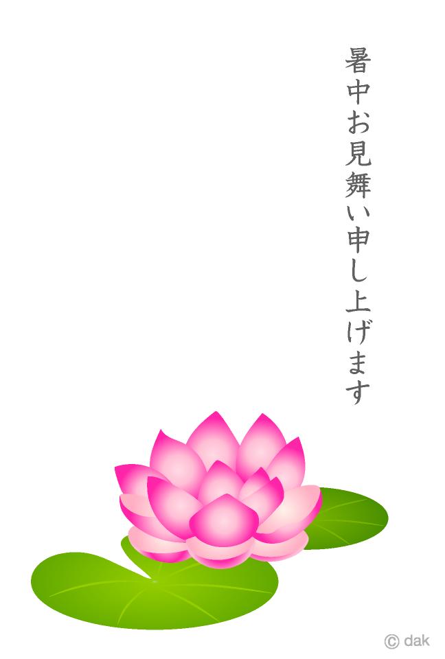 睡蓮の暑中見無いの無料イラスト素材イラストイメージ