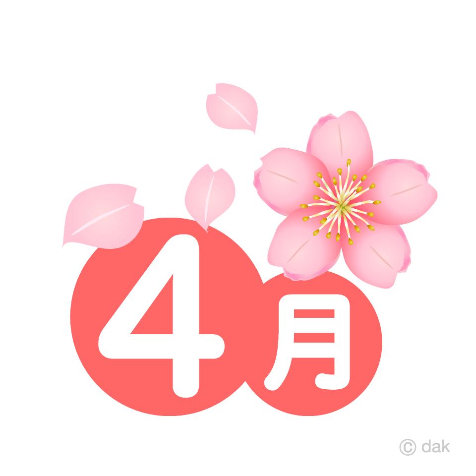 桜の花の4月の無料イラスト素材イラストイメージ