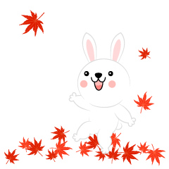 Rabbit to see the autumn leaves
