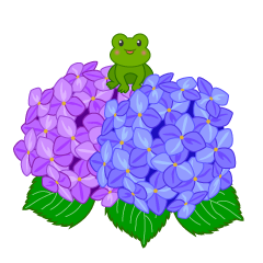 Frog and hydrangea flower clip art