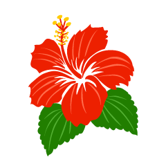Hibiscus clip art on the South Island