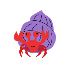 Cute hermit crab