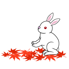 Fallen leaves and rabbits in autumn leaves