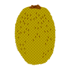Kiwifruit (plaid)