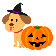 Cute dog and Halloween pumpkin