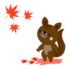 Squirrel autumn leaves