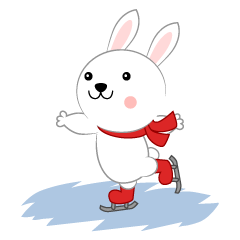 Cute rabbit to skate