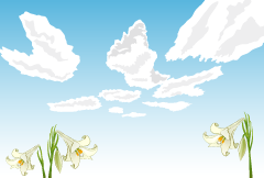 Lily of flowers and sky