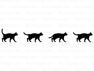 Black cat silhouette line
