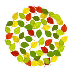 Multicolored leaves circle