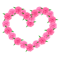 Carnation heart mark