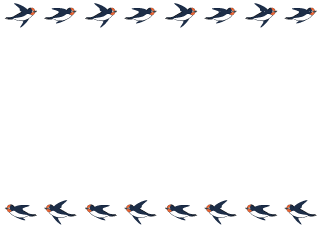 Flying swallow frame