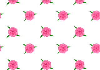 Carnation Floral Pattern Wallpaper