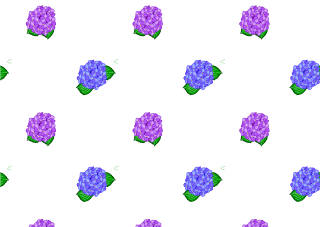 Hydrangea Flower Pattern Wallpaper