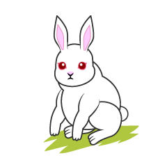 Rabbit of grassland