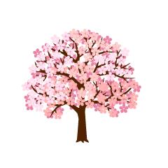 桜の無料イラスト素材集イラストイメージ